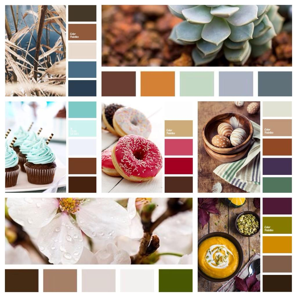 сочетания коричневых оттенков с другими цветами