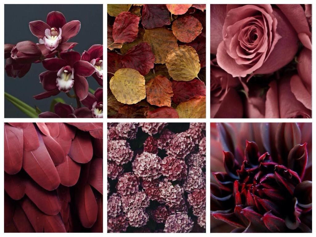 Встречаем в природе и комбинируем в одежде оттенки и цвет Marsala