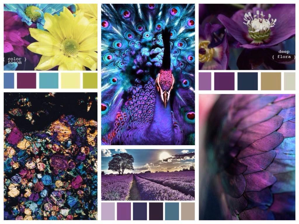 Сочетания фиолетового цвета