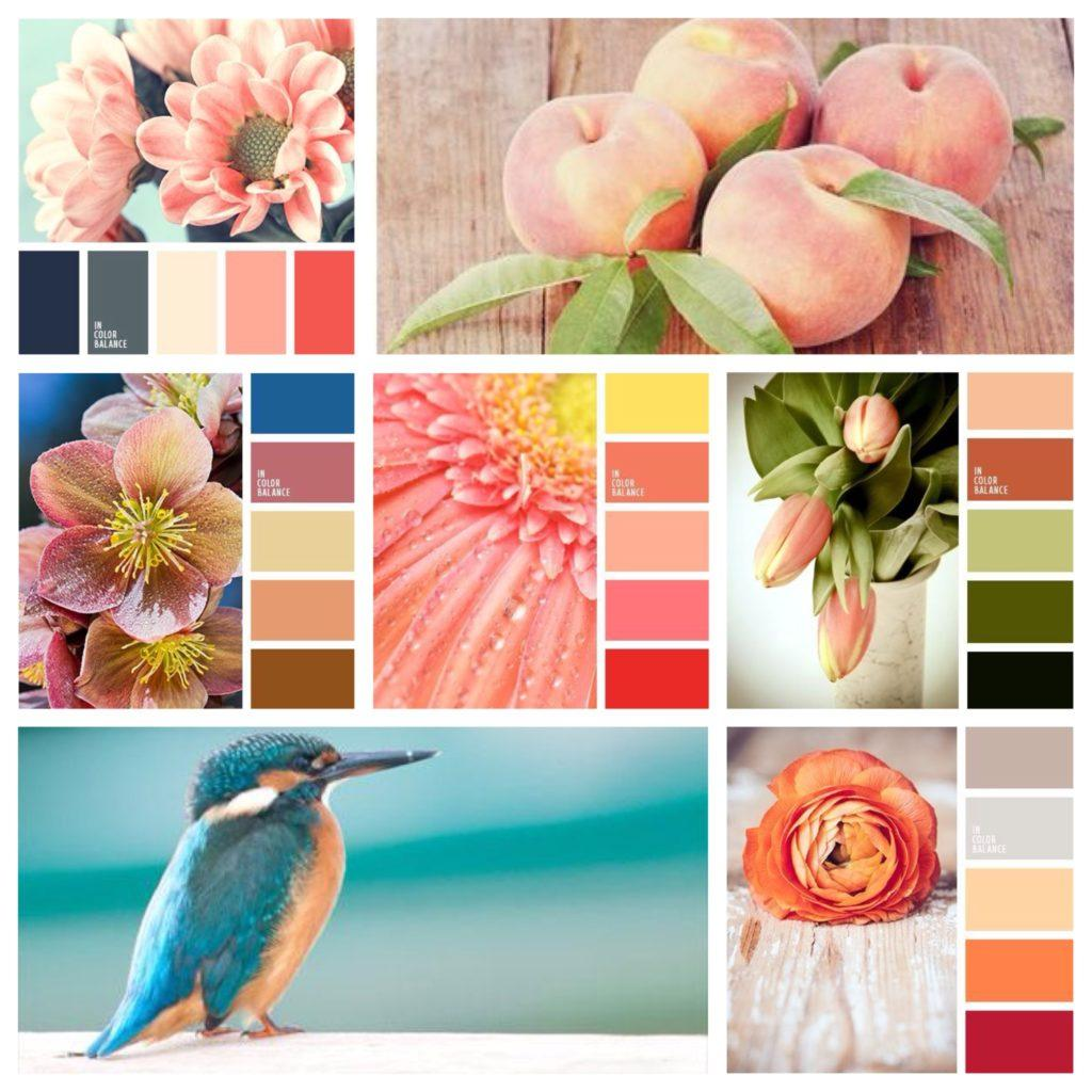 основные сочетания цвета