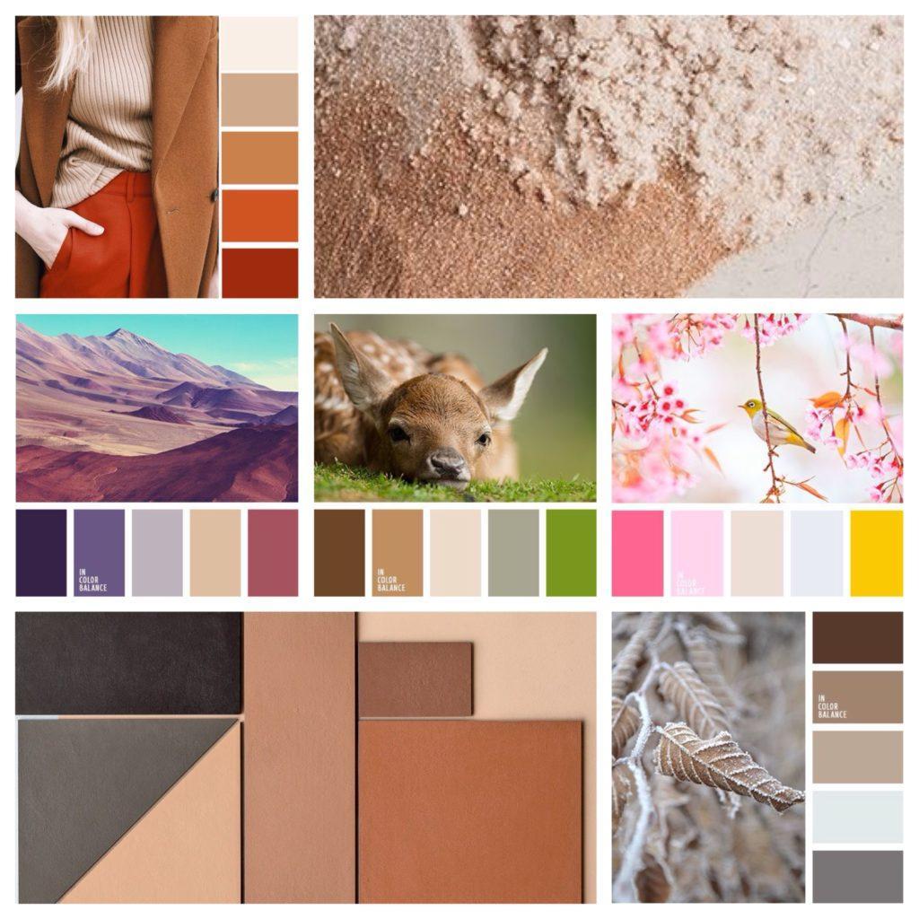 цветовые сочетания с бежевым цветом